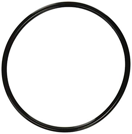 Filter Lid O-ring EQ/Quality