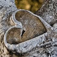 Marriage Spells Bolivia- love spells Bolivia