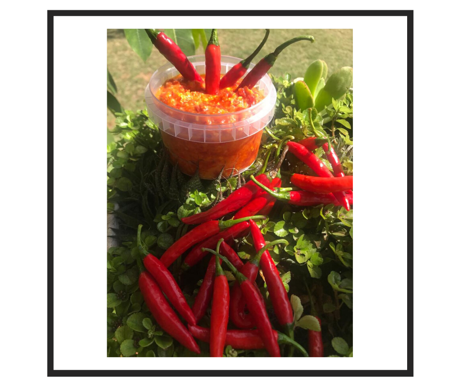 Nonie's Red Chilli Paste