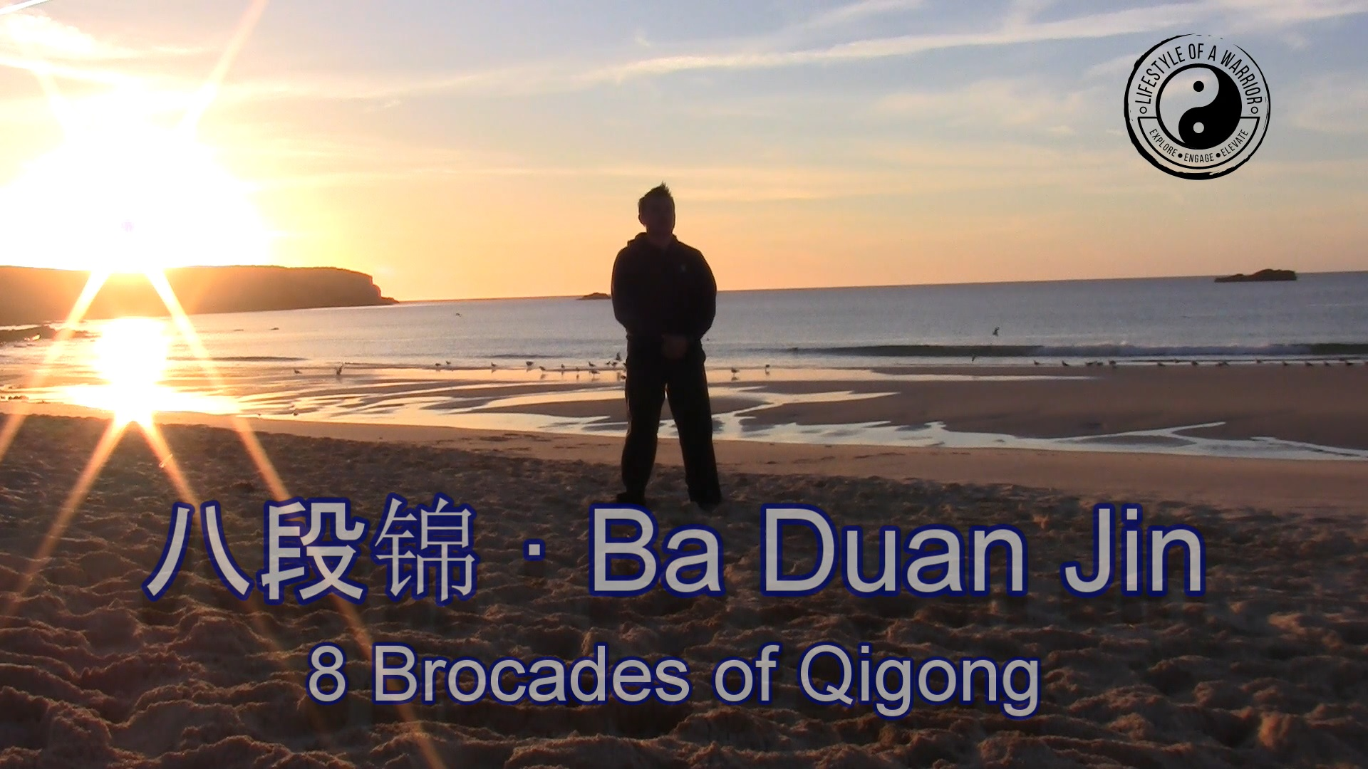 LIMITED OFFER: Ba Duan Jin / 八段锦 · (8 Brocades of Qigong) Instructional Video
