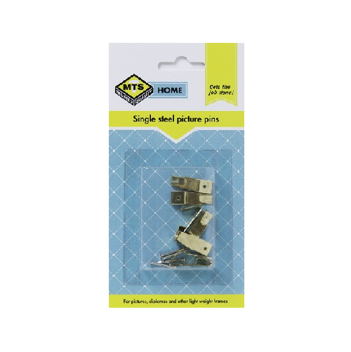 MTS HOME  SINGLE STEEL PICTURE PINS 6 PIECE