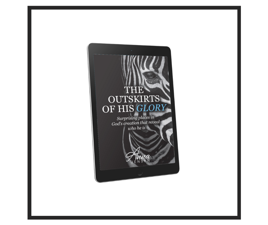 The  Outskirts of His Glory eBook